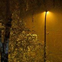 Только осень, ночь и я… :: Татьяна Смоляниченко