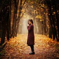 Осень :: Дмитрий Седых
