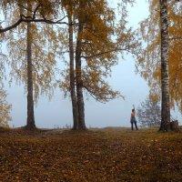 Осенний берег :: korgen