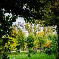 Окно в осень :: Инна Церульнёва