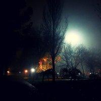 Парк ночью в Денизли :: Наталья12 Ромашкова