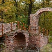 Осенний парк в Дессау. Германия. :: Лада