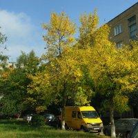 Осенний город :: Viktor Heronin