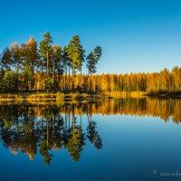 Осеннее затишье :: Aleksandr Papkov