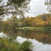 Осень в Ботаническом саду :: Михаил Онипенко