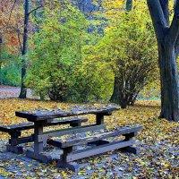 Осенняя грусть :: Лариса Горбатова