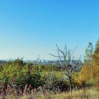 Краски осени :: Валерий Изотов