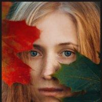 Осенний контраст :: Татьяна Афиногенова