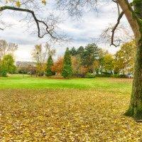 Осенний парк :: Сергей С