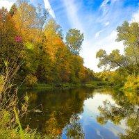 Красочная палитра осени :: Глеб Баринов