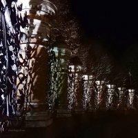 Ночные тайны знаменитой ограды :: Елена Гуляева (mashagulena)
