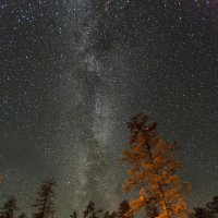 Однажды на севере :: Михаил Потапов