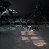 В моём саду :: Владимир Щеглов