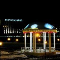 Мавританская беседка :: Taina Fainberg