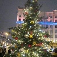 Наряженная ёлка на площади Тверской :: Дмитрий Никитин