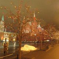 В Новый год без снега. :: photo-cell