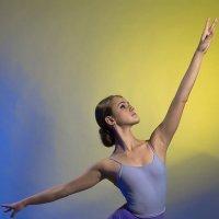 Балерина :: Наталья Колокольцова