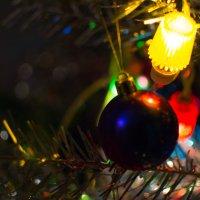 Новогодняя ночь :: Анна