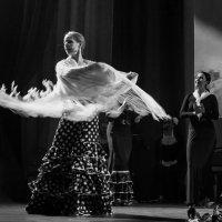 Фламенко :: Ольга Лиманская