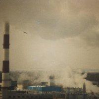 Высокая облачность :: Kosta Krapiva