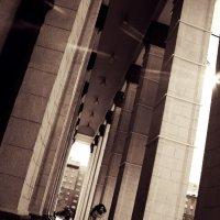 Column :: Анастасия