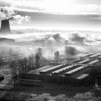 Зимнее утро :: Лариса Кирьянова
