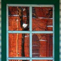 окно :: Ирина Гомозова
