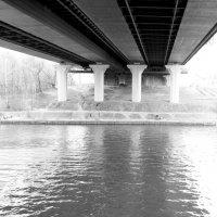 Под мостом :: Lena Zalesska