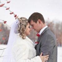 Свадебное :: Юлия Фалей