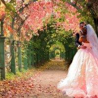 Влюблённые в райском саду :: Ирина