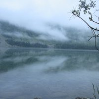 Туманное отражение :: Лизавета