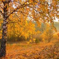Осень, осень... :: Юрий Спасенников