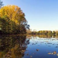 Осень у озера :: Надежда