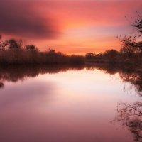 Тишина и Спокойствие Осеннего Утра :: Никита Юдин