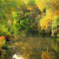 золотая осень :: Горкун Ольга Николаевна