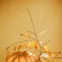 Осеннее настроение :: Алёна Найдёнова