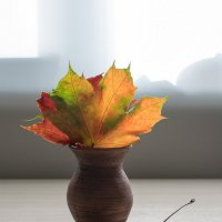 Октябрь :: Милоцвета (Александра Баранова)