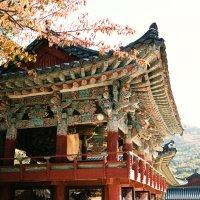 Fall in Korea :: Станислав Маун