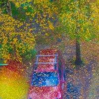 Разноцветная осень :: Алла Королева