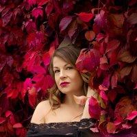 Красное золото осени :: Sushicfoto Photographer