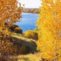 Краски осени :: Николай Сигаев