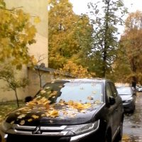 Петербургская осень :: Svetlana Lyaxovich