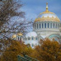 Солнечный день в дождливом Кронштадте :: Евгения Кирильченко