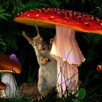 В сказочном лесу :: Татьяна Дружинина