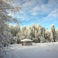 Приятный утренний денек :: Сергей