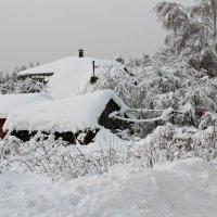 Деревенька зимой :: Лара (АГАТА)