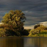 На озере :: Борис Ряузов