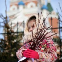 вербное :: tatiana rastorgyeva