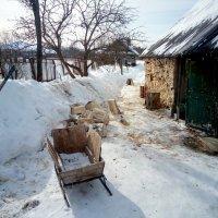 На дворе дрова :: Aioneza (Алена) Московская