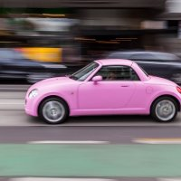 Моя розовая мечта! :: Natalia Pakhomova
